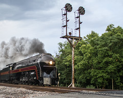 N&W 611 - Concord - June 13 2015 - I'm pretty sure I will be spending many hours working on photoshopping this one... Guy didn't even get the historic CPLs in his frame. (bdunn829) Tags: railroad heritage ns trains steam restored restoration concord 611 norfolkandwestern norfolksouthern 484 concordva railfanning vmt nw611 steamexcursion fireup611