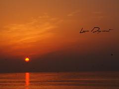 Sunrise at Chavarria (dupont_0) Tags: sunset beach gulfofmexico birds playa pajaros tamaulipas tampico golfodemxico barradechavarria lunadupont