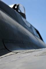 Spring TX 08-01-15-174 (Christopher Stuba) Tags: spring b17 commemorativeairforce texasraiders hooksairport