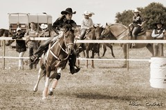 quitation Western (Alain Cachat) Tags: horse france hat cheval nikon riding chapeau western cowgirl tamron rider 70200 stetson horseriding d610 drme barrelracing rhnealpes westerndays cavalire horsewoman autichamp westerndream horser