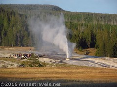 Beehive Geyser Erups (Annes Travels) Tags: yellowstone wyoming uppergeyserbasin geysers geothermal