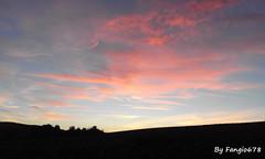 Soleil couchant (fangio678) Tags: nature sentier paysage soleil couchant alsace wolxheim