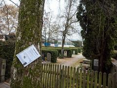 Without words (167) (Suchbild) Tags: friedhof wohnung baum zettel suche zaun grab note cemetery tomb flat tree