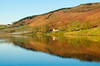 Golden hour (andythomas390) Tags: sunrise dawn golden reflection water trees embsayreservoir northyorkshire yorkshiredales nikon d7000 18200mm