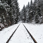 Follow the tracks to the Winter Wonderland. thumbnail