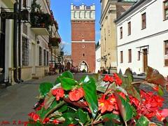 Sandomierz - Opatowska Gate