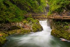 Vintgar (Aljaž Vidmar | ADesign Studio) Tags: nikon gorenjska d800 nature water longexposure slovenia cpl waterfall river bled landscape 2470mm slovenija polarizer gorge vintgar