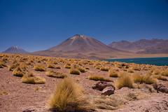 20080225_5541.jpg (BeJayHawks) Tags: atacama trekking landscape lagunamiscanti travel andes