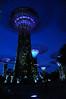 Supertree Grove (Autophocus) Tags: cityscape nightscene architecture urbanlandscape evening bluehour twilight sunset singapore cbd citystate gardensbythebay botanicpark conservatory travel tourism