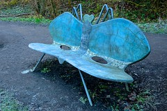 Dragonfly Bench (HBM!) (violetchicken977) Tags: benchmonday hbm metalseat dragonfly