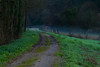 Camino rural (Oscar F. Hevia) Tags: senda camino calea caleya rural track path asturias asturies bueño españa paraísonatural principadodeasturias sotoderibera spain