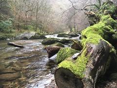 Watersmeet in Winter (HighcliffExmoor) Tags: watersmeet northdevon exmoor lynton