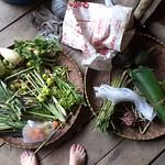 frisch geerntetes Thai-Gemüse