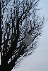 Plastic bag tree