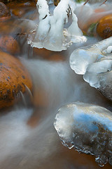 Icicles in Creek, Longmire Meadow (LivingWilderness.com) Tags: winter blur cold ice nature water creek flow frozen freeze mountrainier rainier mountrainiernationalpark icicle flowing icy mtrainier mtrainiernationalpark