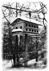 Gone south for the winter (MacSmiley) Tags: winter blackandwhite white snow newyork black art film nature 35mm canon season interesting birdhouse longisland canonae1 1979 interestingness11 snowbird flickrexplore cotcmostinteresting i500 outstandingshots utatafeature b38w black38white imagekind macsmiley bokehsoniceseptember bokehsoniceseptember25 black38whitephotography utata1232006 bestofwinter oldbirdhouses