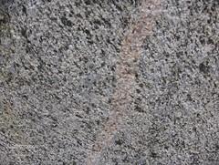 Sten 005 (annesprog) Tags: skulptur sten bramming