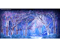 F1095 (scenicprojects) Tags: f1095 frosted forest 40 x 198 122m 6m