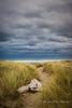 Te Paerahi Beach, Porangahau, Hawkes Bay, New Zealand  *Explored!* (flyingkiwigirl) Tags: allangels anglican beach camp church dukeofedinburgh fishing hawkesbay hotel porangahau stmichael tepaerahi wanstead