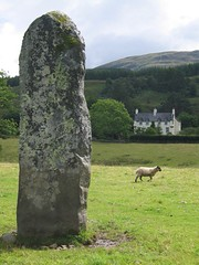 House, sheep, stone (Nurse Agnes) Tags: standing stone celtic sheep lichen achara house duror scotland