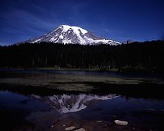 Reflection of Rainier, August 2005 (artandscience) Tags: film landscape mtrainier provia largeformat crowngraphic