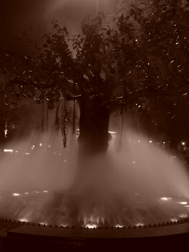 Doesn't this look like opening banner of old hindi movies?  Caught this shot at a park in hyderabad.