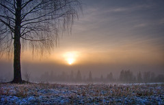Short days (Krogen) Tags: nature norway landscape norge natur norwegen olympus c7070 noruega scandinavia akershus romerike krogen landskap noorwegen noreg ullensaker skandinavia hovin photomatix