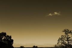 Woodlands Sky1 (mickyates) Tags: light england sky blackandwhite bw sepia clouds blackwhite micky woodlands albaluminis space d2x altruism minimal negativespace zen fengshui openspace minimalism emptiness masterclass nikond2x mc05 nocheat doynton mc05negativespace1 mc05negativespace