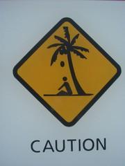 caution (m.a.r.c.) Tags: sign coconut australia drop palm schild caution magneticisland
