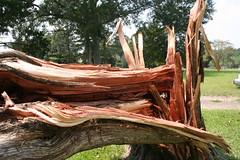Shattered (G. J. Charlet III) Tags: hurricane hurricanekatrina clinton louisiana