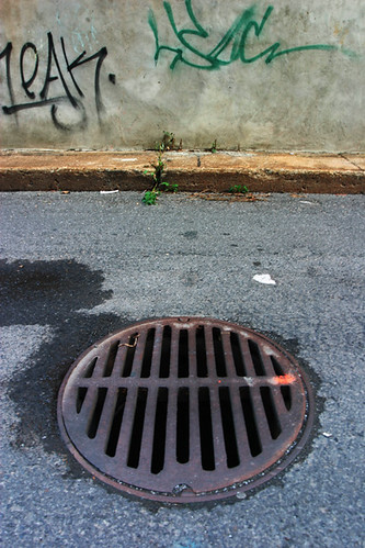 Plateau Alley Sewer Cover by Sol Lang