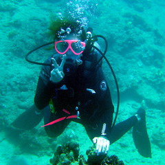 "#543 ""peace"" diver (Nemo's great uncle) Tags: geotagged peace underwater scuba diving hawai'i ハワイ hi peacesign waianae piisu interestingness427 i500 ピース pīsu 水中 peacevsign geo:lat=21448722 geo:lon=158196599"