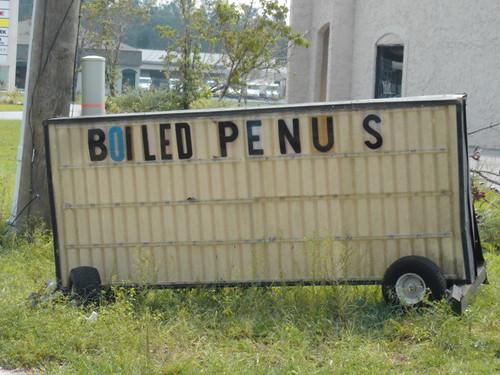 penus penus penus penus. Boiled Penus