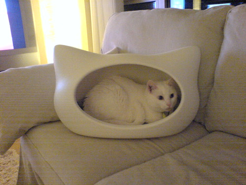 whiskas cat bed 1