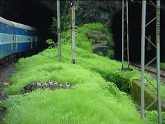 tunnel2 (indiagenie) Tags: konkan