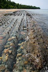shipwreck (sumbler) Tags: sumbler superior 12milebeach twelvemilebeach beach michigan up upperpeninsula picturedrocks greatlake shipwreck water lake