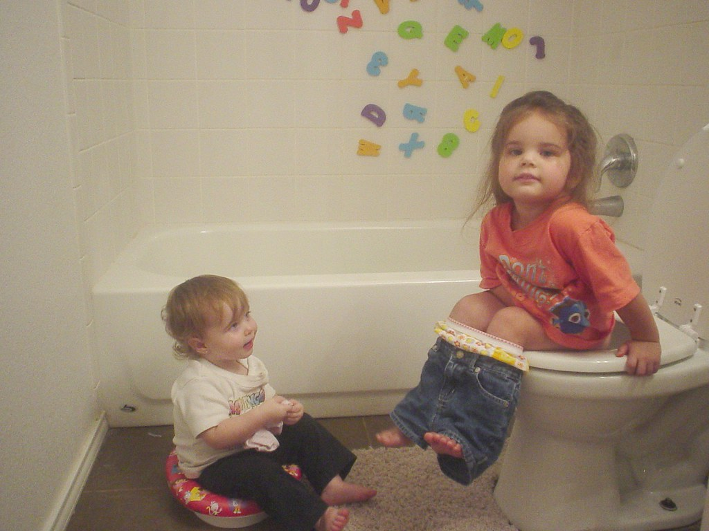 Potty Training Supplies For Girls Best Baby Potty Seats