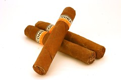 Cohiba Robusto (redmann) Tags: vacation holiday ontario canada topv111 wow 50mm interestingness bravo cuba sigma cigar cuban stratford cohiba sigma50mmf28exdgmacro