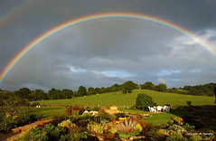 Rainbow  Series 1 (mickyates) Tags: light sky cloud topf25 beautiful topv2222 wow garden spectacular wonder amazing fantastic rainbow topf50 topv555 topv333 micky woodlands nikon topf75 bravo shine inho artistic albaluminis gorgeous magic topv1111 topc50 topc75 topv999 dream altruism best topf300 500v50f stunning topv topv777 fengshui topv9999 topv11111 topf150 incredible topv3333 topv4444 topf100 eclectic topf200 impressive nikond1x masterclass topv8888 1111v11f mc04 7777v77f 2222v22f topv22222 mc04submission01epicsky topmc04 topf444 3333v33f 8888v88f 5555v55f 4444v44f 9999v99f aagallery 6666v66f 11111v111f theinterestingest 22222v222f onenesslabyrinth onenessplains perpetualtravellers