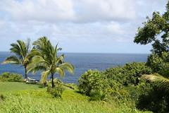 IMG_5674 (pdxjeff) Tags: hawaii kauai cliffs princeville resort