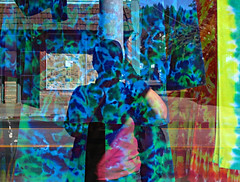 town in the tie-dye window (fotogail) Tags: california selfportrait reflection window self nice fv5 tiedie teeshirts fotogail willits mewithmyhairtiedback redwoodtreesontheridgebehind sfchronicle96hours your300pre2006favesthanks