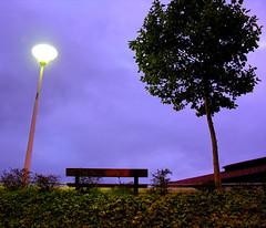 la nuit violette
