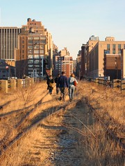 High Line NYC by Lee Otis, on Flickr