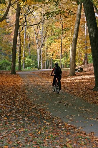 fall biker