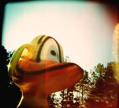 Quack 2 (WadeB) Tags: quack holga duck film 2005 playground sky trees square toy lofi xpro corssprocess toycamera