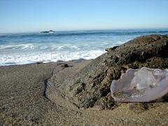 Washed Up (rsebastian) Tags: pacificocean pescadero hostel coast ocean westcoast retreat pigeonpoint