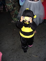 Bumble bee, photo by forty42two