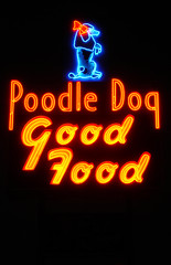 Poodle Dog (Curtis Gregory Perry) Tags: road old travel blue light red dog signs color colour classic luz glass beautiful crimson animal animals sign electri