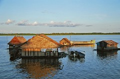 Floating houses on the Amazon (Bruno Girin) Tags: houses peru river amazon floating iquitos loreto