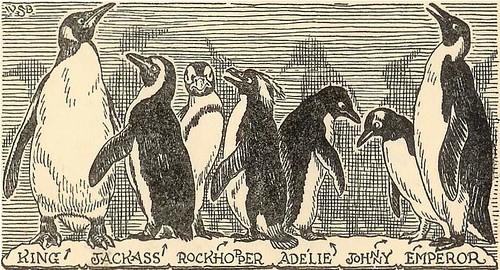 story parade penguins